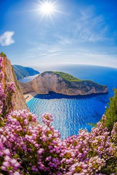 Navagio beach with shipwreck and flowers against azure sea on Za by Tomas Marek on 500px