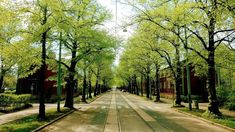 Sidewalk, Country Roads, Side Walkway, Sidewalks, Pavement, Walkways
