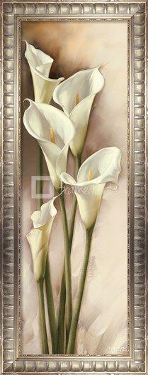 Callas Gracieux I Fine-Art Print by Igor Levashov at FramedArt.com