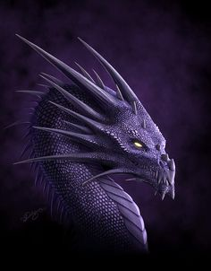 Purple Dragon by deligaris.deviantart.com... VERY LARGE Picture.