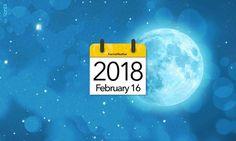 chinese new year 2019 holidays animal date