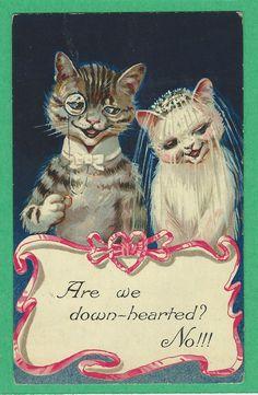 Vtg PC Boy Cat w A Monocle Girl Cat w A Veil Getting Married Artist signed Ellam c. 1910   eBay