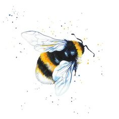 Tattoo idea Bumble Bee A beautiful minibeast print in miniature! Signed and mounted Giclee Print. Artwork Size: (w) x (h) including mount. Aperture size (of print) 12 cm (w) x 12 cm (h) Bumble Bee Tattoo, Honey Bee Tattoo, Bee Painting, Painting Prints, Petit Tattoo, Aquarell Tattoo, Bee Art, Bees Knees, Body Art Tattoos