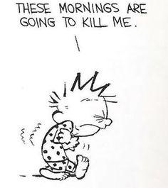 Calvin and Hobbes - mornings are going to kill me Calvin And Hobbes Quotes, Calvin And Hobbes Comics, Peanuts Cartoon, Peanuts Snoopy, William Boyd, The Awkward Yeti, Film Disney, Fun Comics, Hobbs
