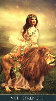 Tarocistka Beata (@TarocistkaB) | Twitter Strength Tarot, Tarot Significado, Lion Photography, Divination Cards, Lion Love, Isis Goddess, Love Tarot, Oracle Tarot, Bride Of Christ