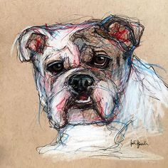 Pet Portrait Sketches and Drawings by Julie Pfirsch Huey the Bulldog - pencil, pen and colored pencil on tan toned paper www.juliepfirsch.com