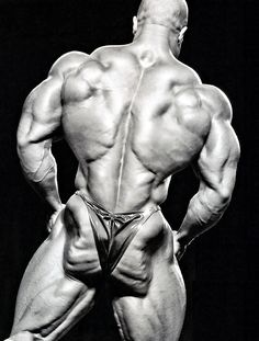 # Like, repin, share! Thanks :) Check out 2 X Mr Olympia Phil Heath in his best selling DVD: Phil Heath - Journey to the Olympia: http://www.primecutsbodybuildingdvds.com/Phil-Heath-Journey-to-the-Olympia