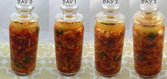 Benefits of fermented foods!  Delicious homemade Kimchi (fermented cabbage). It's alive!