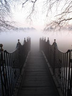 into the fog.