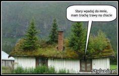 Stary wpadaj do mnie... Wind Turbine, Humor, Funny, Humour, Funny Photos, Funny Parenting, Funny Humor, Comedy, Hilarious