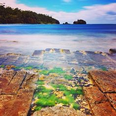 The beautiful lines of the Tessellated Pavement on the Tasman Peninsula, captured by Paul Fleming. This incredible geological feature is best explored at low tide for panoramic views of the patterns created by thousands of years of fierce storms and erosion. #discovertasmania  #tessellatedpavement #tasmanpeninsula #tasmania