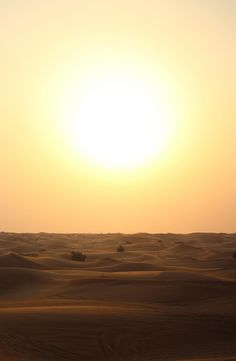 📌 Check out this free photoSun Sunset Sunrise    ✅ https://avopix.com/photo/11480-sun-sunset-sunrise    #sun #sunset #sunrise #sky #silhouette #avopix #free #photos #public #domain
