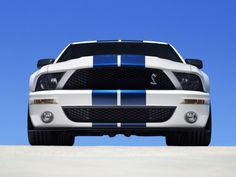 Ford mustang shelby gt500 cars production white (1920x1440, mustang, shelby, gt500, cars, white)  via www.allwallpaper.in