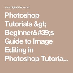 Photoshop Tutorials > Beginner's Guide to Image Editing in Photoshop Tutorial > Pluralsight