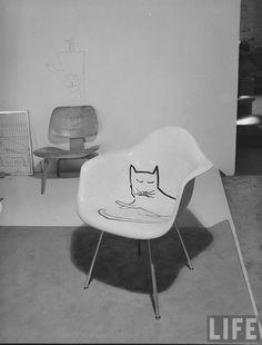 Saul Steinberg, Catnap
