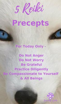 Traditional reputed reiki energy he has a good point Self Treatment, How To Start Meditating, Reiki Quotes, Animal Reiki, Reiki Courses, Reiki Therapy, Learn Reiki, Reiki Practitioner