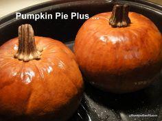 Badge for Pumpkin Series, gluten free, dairy free, pumpkin, recipes Making Pumpkin Puree, Best Pumpkin Pie, Pumpkin Pecan Pie, Pumpkin Butter, Pumpkin Recipes, Recipes With Gf Flour, Gluten Free Pumpkin Bread, Recipes With Whipping Cream, Pumpkin Pie Smoothie