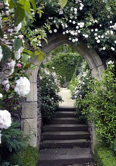 Hanham Court - stairs lead through a stone arch, which is covered in roses