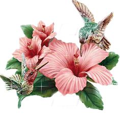flowers animation images | Animated Blooming Flowers Pics | All Flowers | Send Flowers Comments ...