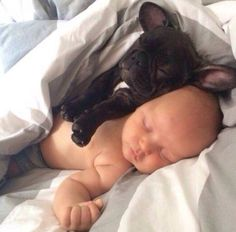 French Bulldog Puppy and Baby❤️❤️