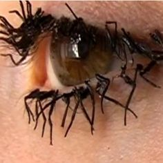 A British artist has made fake eyelashes out of fly legs.   Who thinks of these things?  Yuck