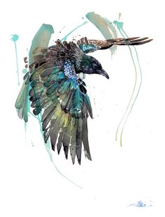 Official Rachel Walker Page. New Zealand watercolour, spray paint, pen and ink artist creating splashy celebrations of native and rare animals. Watercolor And Ink, Watercolor Paintings, Art Paintings, Watercolor Trees, Indian Paintings, Watercolor Portraits, Watercolor Landscape, Abstract Paintings, Rachel Walker