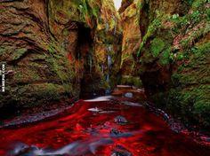 Blood River - Gartness, Scotland