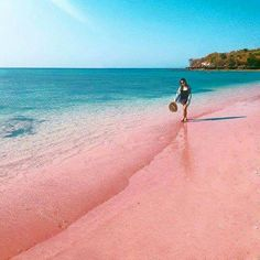 PINK BEACH, LOMBOK ISLAND, INDONESIA #WonderfulIndonesia