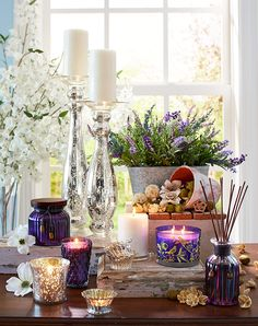 The clean, calming fragrance of classic lavender comes in many forms.