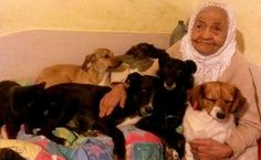 Romanian Grandma Saves Hundreds Of Dogs & Cats From Freezing | Care2 Causes..Bless her heart! <3