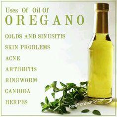 Uses of oil of oregano