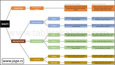 Mit o štetnosti (zasićenih) masti Holistic Nutrition, Map, Location Map, Maps