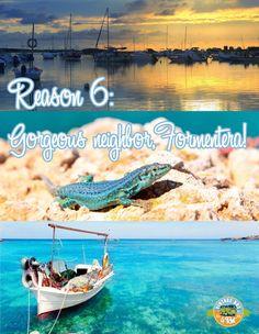 Reason 6 to come to Ibiza Beautiful neighbour Formentera. #sun#wedding#hippiebus#vintage#retroride#beaches#bluewater