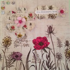 Craftwork Cards: Botanica