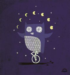 Night Juggler Owl