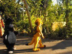 Magic Kingdom It's A Small World Animal Kingdom Epcot Hollywood Disney Disney Resorts Disney Resorts, Disney Disney, Animals Of The World, Small World, Epcot, Magic Kingdom, Animal Kingdom, Hollywood