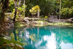 The Blue Hole is a secret garden, off the beaten track. It has a natural pool at its center, fed by an underground spring.   Photo Caption: The Blue Hole Mineral Spring near Negril, Jamaica  Frommer's