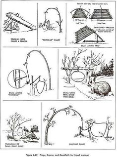 wilderness survival guide tips that gives you practical information and skills to survive in the woods.In this wilderness survival guide we will be covering Survival Life Hacks, Survival Tools, Wilderness Survival, Camping Survival, Outdoor Survival, Survival Prepping, Survival Equipment, Survival Shelter, Winter Survival
