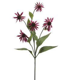 34'' Coneflower Spray Rubrum : floral : crafts :  Shop | Joann.com