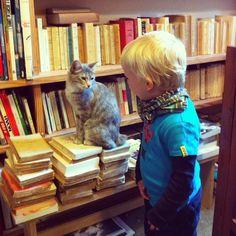 El llibreter