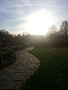 Path, Orange County Arboretum