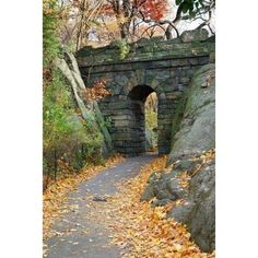 Stone bridge in Autumn in New York City Central park ❤ liked on Polyvore featuring backgrounds
