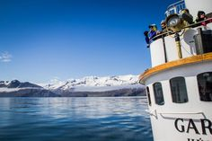 padusiowo: Islandia #1 - Polowanie na wieloryby