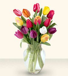 10 Mix Tulip - Send gifts to Philippines, sent flowers to Philippines from pinaygifts.com. We offer you all types of chocolates, flower buckets and many more gifts at best price.