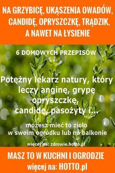 hotto.pl-NA GRZYBICĘ, CANDIDĘ, OPRYSZCZKĘ, TRĄDZIK A NAWET NA ŁYSIENIE Herbal Remedies, Natural Remedies, Healthy Nutrition, Health Diet, Herbalism, Medical, Herbs, Weight Loss, Nature