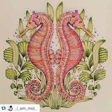 Resultado de imagem para tropical world coloring book