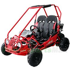 GK-M05 163cc Kid Size Go Kart with Automatic Transmission, 5.5 HP General Purpose Engine, Remote Control! Free Gifts!