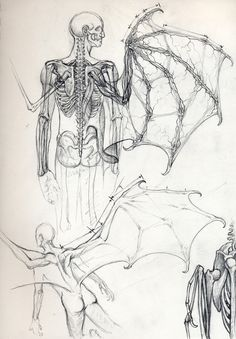 Vampire Anatomy 2 by DanielGovar love art Vampire Anatomy 2 by DanielGovar on DeviantArt Mythological Creatures, Fantasy Creatures, Mythical Creatures, Drawing Sketches, Art Drawings, Drawing Faces, Drawing Tips, Wings Drawing, Arte Sketchbook
