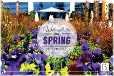 ツ We wish a great Newroz and a colourful  #spring  to all over the #World with full of #peace and happiness.   ツ Tüm Dünya'ya #barış ve #mutluluk dolu, #renkli bir #ilkbahar ve dileklerin gerçek olduğu bir Nevruz dileriz.