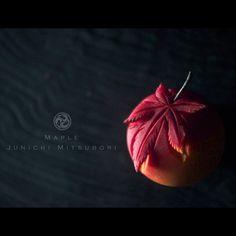 #一日一菓 #菓道 「 #紅葉 」 #wagashi of the Day #maple #煉切 製 #針切り 本日は紅葉です。 そろそろ紅葉も見納めになって来ましたね、 今回は針切りで紅葉を切って見ました。 上手なヘタは焙じ茶で仕上げて見ました。 #JunichiMitsubori #和菓子 #一菓流 #ART #アート